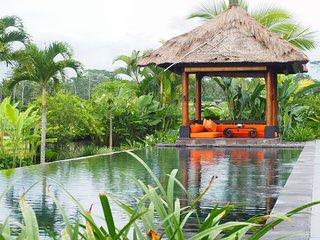 Cozy Payangan Villa rental with A/C - Payangan vacation rentals