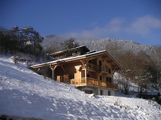Beautiful ski chalet St Jean d'Aulps with great views - Saint Jean d'Aulps vacation rentals