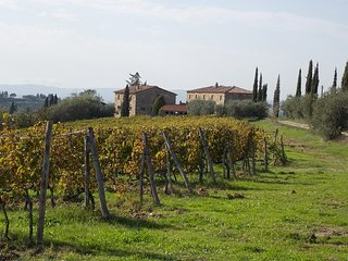 Nice Condo with Internet Access and Tennis Court - Castellina In Chianti vacation rentals