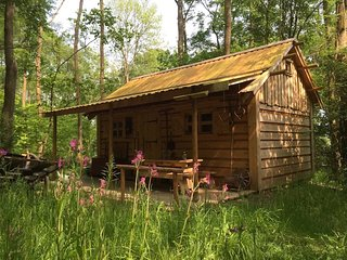 Beautiful 1 bedroom Cabin in Forest Row - Forest Row vacation rentals