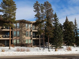 Lake Cliffe 2 Bed 2 Bath Views - Dillon vacation rentals