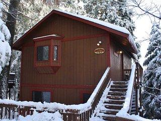 Cedar Wood in Lake Arrowhead - Lake Arrowhead vacation rentals