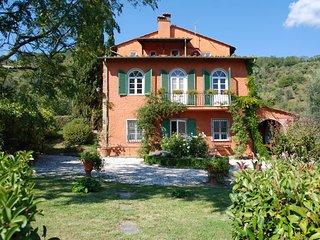 Comfortable 6 bedroom Villa in San Martino in Freddana - San Martino in Freddana vacation rentals