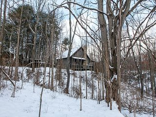 Perfect 2 bedroom Logan Cabin with Deck - Logan vacation rentals