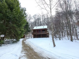 Perfect 2 bedroom South Bloomingville Cabin with Deck - South Bloomingville vacation rentals