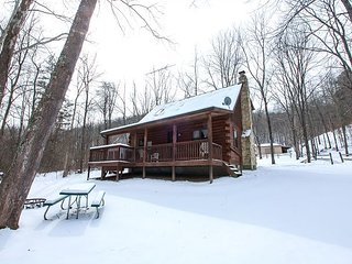 3 bedroom Cabin with Deck in South Bloomingville - South Bloomingville vacation rentals