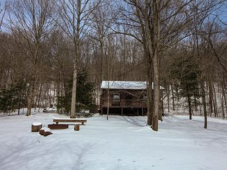 Romantic Cabin with Deck and A/C - Laurelville vacation rentals