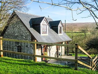 BLAENDYFFRYN FACH, off the beaten track, woodburner, WiFi, dogs welcome, near Llanllwni, Ref 947942 - Llanllwni vacation rentals