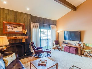 Homey, fourth-floor condo in Snowlion - close to slopes! - Vail vacation rentals