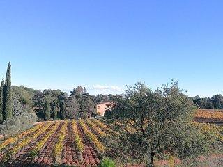 belle villa climatisée 140m2, 3 chambres, 2 SDB, piscine, au milieu des vignes - La Motte vacation rentals