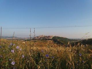Masseria nella Campagna di Montenero di Bisaccia - Montenero di Bisaccia vacation rentals