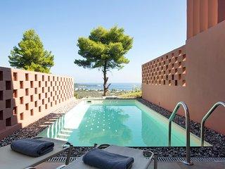 Cozy 2bedroom Villa with Private Pool - Agia Anna vacation rentals