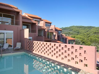 Luxury 2 bedroom Villa with Private Pool - Agia Anna vacation rentals