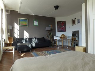 Light and spacious apartment close to the center - Amsterdam vacation rentals