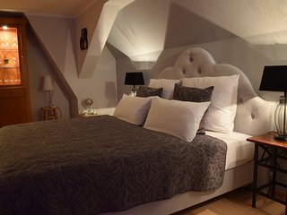 DELUXE - Baumwipfelappartement/Loft (barrierefrei)WLAN, SKY, SAUNA, Hunde erl. - Bergen b Auerbach vacation rentals