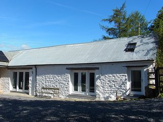 Rhiwiau self catering, new barn conversion, Brechfa forest - Llanllawddog vacation rentals