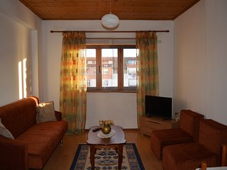 Romantic 1 bedroom Apartment in Tirana with Internet Access - Tirana vacation rentals