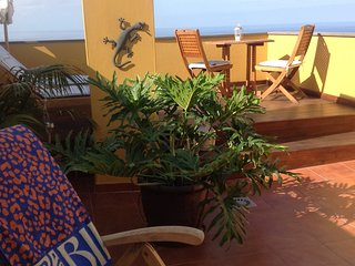 Beautiful 1 bedroom Penthouse in Tazacorte with Internet Access - Tazacorte vacation rentals