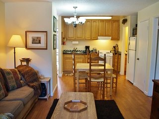 Heart of Mammoth - Listing #230 - Mammoth Lakes vacation rentals