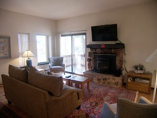 Cozy 2 bedroom Incline Village Apartment with Internet Access - Incline Village vacation rentals