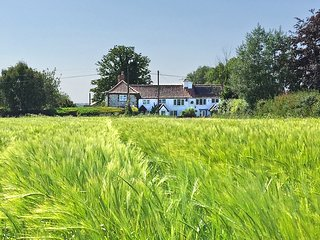 Charming 2 Bedroom Dog Friendly Cottage with Fenced Garden in the Norfolk Broads - Repps with Bastwick vacation rentals