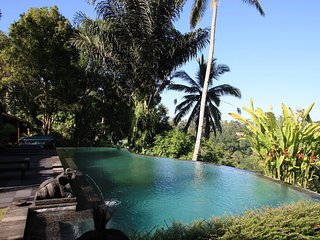 Gorgeous 4BR Villa in Ubud with spectacular view over the jungle! - Payangan vacation rentals