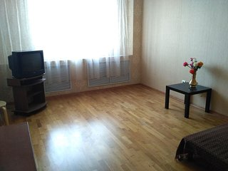 Comfortable apartment near the center - Kazan vacation rentals