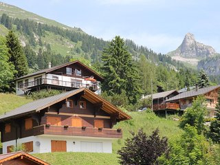 Nice Condo with Television and Microwave - Leysin vacation rentals