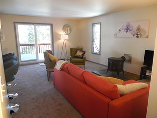 Euro Chic in Alpine Meadows! - Olympic Valley vacation rentals