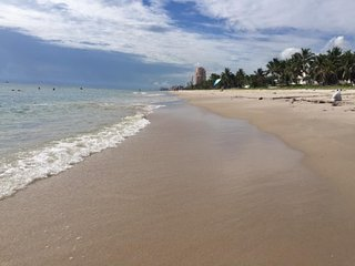 TORTUGA, a charming SALTY BUNGALOW: 87 steps to beach, clean, green, pet friend - Fort Lauderdale vacation rentals