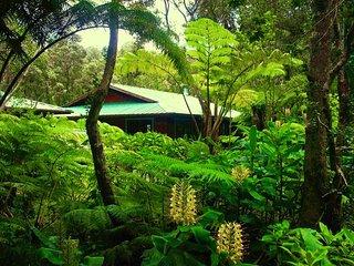 Volcano Anthurium Alii Gardens - Volcano vacation rentals