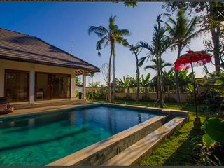 Beautiful 3Br CLOSE Canggu Beach - Canggu vacation rentals