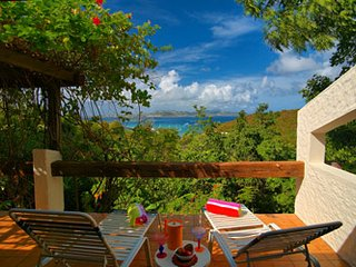 Guavaberry Hill Villa - Cruz Bay vacation rentals