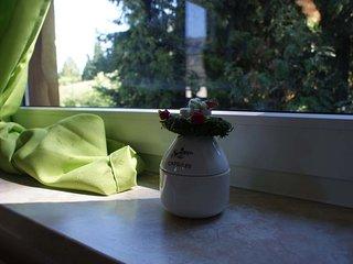 Ferienwohnung Glückauf in Oelsnitz-Erzgebirge - Stollberg vacation rentals