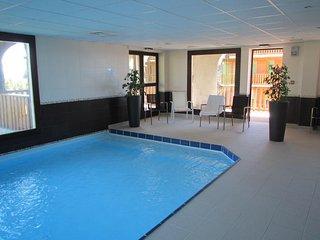 Station supbesse superbe T3 41m2 6p + terrasse 15m2 SUD+ piscine/sauna gratuit - Besse-et-Saint-Anastaise vacation rentals