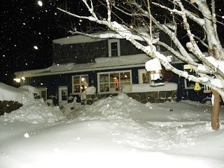 Winter Activities on Georgian Bay!  Ice Fishing, XCountry Skiing, Snowshoing! - Tiny vacation rentals