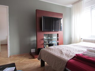 Natali Downtown Apartment Sunny&Spacious&Parking - Belgrade vacation rentals