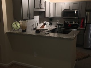 Sandy Spring Luxury Apartment Home - Sandy Springs vacation rentals