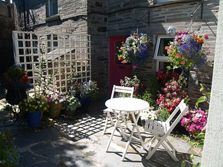 Delightful,cosy cottage near Port Isaac Cornwall - St Teath vacation rentals