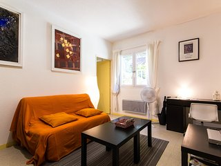 2 bedroom Apartment with Internet Access in Grenoble - Grenoble vacation rentals