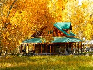 Historic Log Cabin on Creek, near Telluride - Ridgway vacation rentals