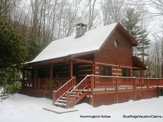 Cozy House with Internet Access and A/C - Valle Crucis vacation rentals