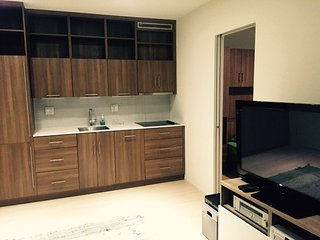 Furnished 1-Bedroom Condo at 17th St NW & Kalorama Rd NW Washington - District of Columbia vacation rentals