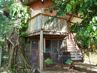 Whimsical Treehouse on a Cacao Farm with views over Dolphin Bay - Bocatorito vacation rentals