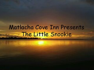 The Little Snookie - Matlacha vacation rentals