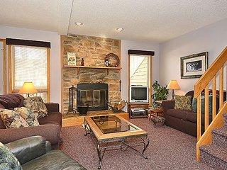 Airy and bright 3 bedroom condo located in Canaan Valley, WV! - Davis vacation rentals
