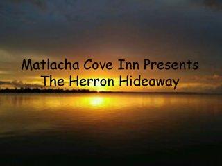 The Heron Hideaway - Matlacha vacation rentals