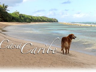 Casa de Caribe-only 5 min drive to North side secluded beaches. - Isla de Vieques vacation rentals