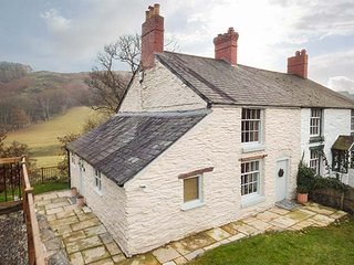 RIVERSIDE COTTAGE, enclosed lawned garden, pet-friendly, close to pub, Llangollen, Ref 949600 - Llangollen vacation rentals
