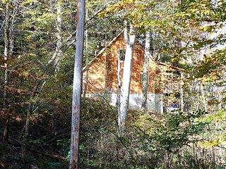 Hidden Valley Cabin - Gibisonville vacation rentals